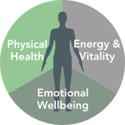 Person silhouette showing three areas of health - physical health, energy & vitality and emotional wellbeing